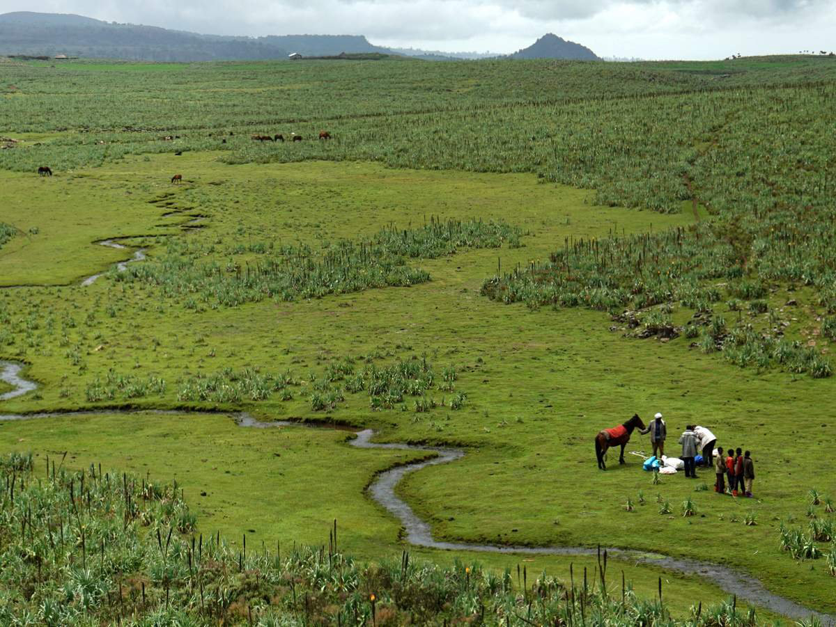 bale-mountains-trekking-ethiopia-1-DSC00756-004-photo-©-linetta-schneller-zenaye-001